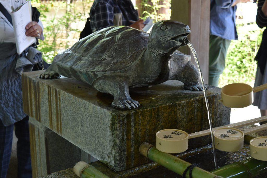 眷属は亀 秦氏は亀と鯉に乗ってやってきたそうです。